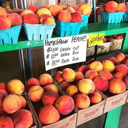 Where to Get Fresh Georgia Peaches (updated 2019)
