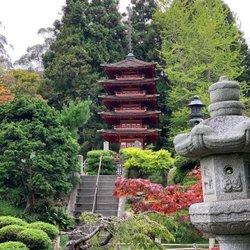 Japanese Tea Garden in San Francisco🎋очень красивый японский сад 🎎 🇺🇸 #sanfrancisco