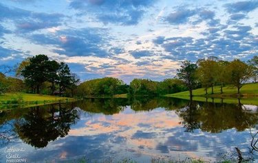 A lovely evening scene captured in Greensboro, Alabama. Photo credit belongs to catseale. #al #alabama #onlyinyourstate #scenery #outdoors #alabamaoutdoors #reflection #nature #alphotography #alphotographer #alabamaphotography #alabamaphotographer #greensboro #rural #ruralalabama #evening  #dusk #sunset #countryside #thisisalabama #photooftheday Tag #onlyinalabama to have your photo featured 📷😀