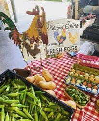 Photo by cibeleoliveirasantos, caption reads: #eggs tuscaloosarivermarket #alabama #tuscaloosa #braziliangirl #brazil  #ovos #okra #SightOfAlabama, #ScentOfAlabama, #TasteOfAlabama, #SoundOfAlabama, #FeelingOfAlabama alabamatravel