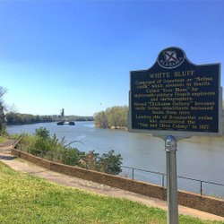 Photo by novanola, caption reads: Submerging in archival Demopolisz facts today. #latergram #demopolis #sweethomealabama #blackwarriorriver #tombigbeeriver #riverbluff #researchtrip