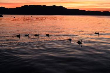 Tahoe Photooftheday Travel Travelphotography Instagood Fuji Justgoshoot Exploretocreate