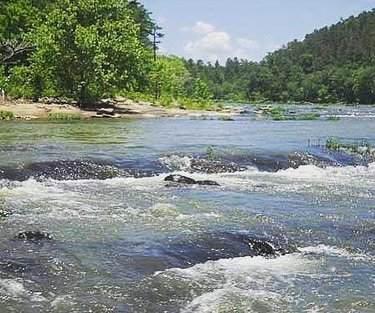 It's almost time to pull out the canoe or kayak and float down one of Alabama's many rivers. The Cahaba River is home to many species of animals and plants only found in our state. Find a put-in spot for your boat and log those miles! This lovely pic provided by our friends at the alabama_scenic_river_trail #100ALMILES