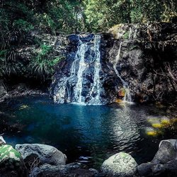 Hidden waterfalls✅Native wildlife✅Under an hour's drive from the Coast✅If you need any more convincing to explore Binna Burra, then you've come to the wrong page. Boasting diverse walking trails, hundreds of waterfalls and mountainous views that will have you loathing the idea of leaving, Binna Burra is something a little special, super close to the Coast.✨ #WeAreGoldCoast #thisisqueensland #SeeAustralia #UnDiscoverAustralia @queensland 📸@anselm_lobo