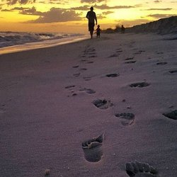 Leave your footprints and a piece of your heart in #GulfShoresAlabama. #OrangeBeachAlabama #OrangeBeach#OBA #GulfShores #AlabamasBeaches #SmallTownBigBeach #SweetHomeAlabama #ThisIsAlabama #CleanIsland #LeaveOnlyFootprints #LeaveNoTrace