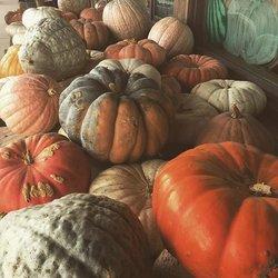 Fall festivities ? #spookyseason #happy #autumn #photooftheday #picoftheday #photooftheday #instagood #instadaily #fall #fallislife #pumpkin #october