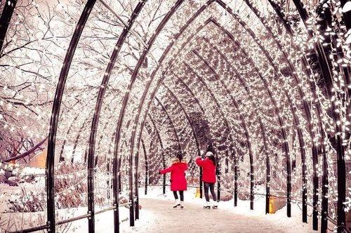 你已经知道了,但这是圣诞节前的最后一个周末! 我们提供以下形式的庆祝活动:🎄最后一分钟的购物需求🎁包括The Forks Market的精彩供应商,阳台上的@thirdandbird弹出窗口,礼品券+信息亭的叉子商品🎄所有闪烁的灯光遍布整个网站! 🎄@ greencarrotjuiceco mimosas现场@thecommonwpg🎄北极冰川冬季公园冬季冒险活动周日下午所有详情请访问theforks.com假日时间:12月24日:早上7点 - 下午4点(滑冰更衣+洗手间访问至晚上11点)12月25日:冰岛滑冰租赁+迷你甜甜圈开放中午 - 晚上8点。 滑板更换和洗手间访问,直到晚上11点。 所有其他供应商都在休假。 每隔一天开放正常时间! #MeetMeAtTheForks📷:@ gyk26