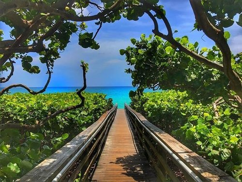 Where Is Jupiter Florida >> Jupiter Fl 2019 The Best Things To Do Dining Attractions