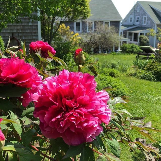 House Rentals on Block Island | Rhode Island