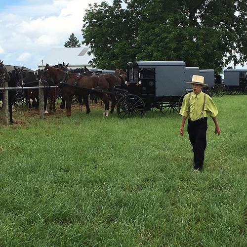 PA Amish Mud Sales and Auctions in Lancaster County, Pennsylvania