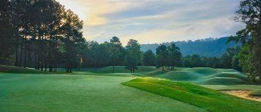 Fore! Experience golf unlike any other in #SweetHomeAlabama. http://bit.ly/ALGolfParadise