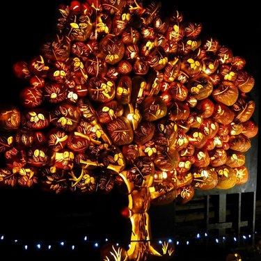 PumpkInferno. #pumpkinferno2016🎃 #uppercanadavillage #autumn #jackolantern #pumpkin #igerscanada #igersottawa #vibrant #fall🍁