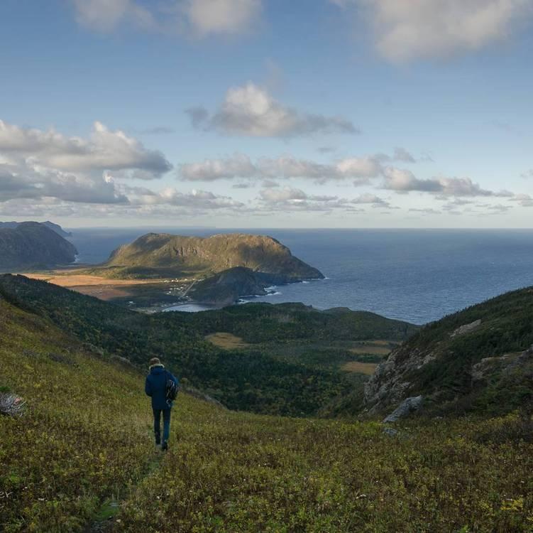 Newfoundland online dating sites