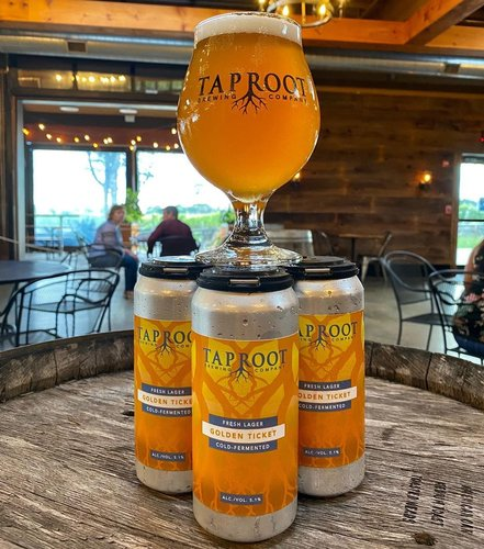 Introducing a brand new addition to the lineup: Golden Ticket. A crisp, easy-drinking lager loosely inspired by the German Festbier style but more crushable. Perfect to welcome October. 5.1% ABV. Now available on draft and in 4-packs! Reservations available for this week, and this weekend is filling up. Visit taprootbeer.com for visiting details.🍻