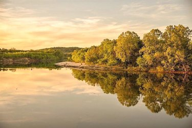 Sunset on the river in Tuscaloosa County. Tag HikeAlabama & use  to be featured. (📸: fonix2015) ________________________________________________ 💘 Follow Alabama.Stephen__ for more 😉 * Comment below if You like this 💕 * 💘 Tag your friends 👇  #alabamaoutdoors #natureshot #alabamariver #alphotography #peaceful #alabamarivers #riversofinstagram #alphotographer #onlyinyourstate #outdoors #alabamaphotographer #alabamaphotography #alabama #nature