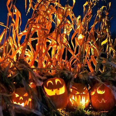 PumpInferno. #pumpkinferno2016🎃 #uppercanadavillage #igerscanada #igersottawa #myottawa #ottawatourism #vibrant #pumpkin #jackolantern #autumn