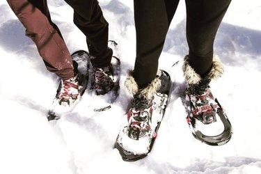 Looks like the #weather is prime for some #snowshoeing! 😍❄🌨 It's a fun and #healthy way to #GetOutside and #EmbraceWinter! ⛄🎿🌲 @bayofquinte @visitkingston @1000islandscan @cataraquiregionca @ontarioparks @parks.canada #showshoe #winterfun #GreatWaterway #DiscoverON