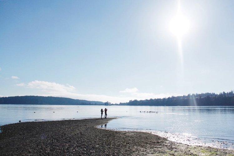 Visit Nanaimo - Vancouver Island's Harbour City on thunder bay, red deer, prince george, vancouver island, nanaimo bar,