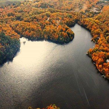 Gatineau Park from afar #discover #discoveron #explorecanada #myottawa #gatineaupark #fall #colors