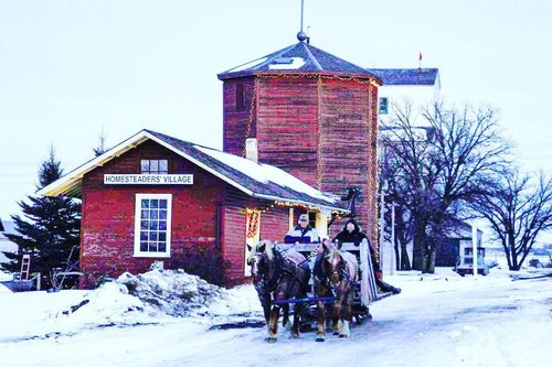 马拉的雪橇在冬天妙境乘坐。 #winter #mbagmuseum #holidayseason #sleighride #manitoba #sigsstills #travelmanitoba