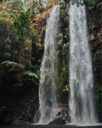 Here's an accurate description of the feeling you'll have when jumping under Twin Falls for the first time. 💦 Not just about the waterfall, located in Springbrook National Park, this place is home to amazing flora, fauna and wildlife. 🌳 Think brush box, Antarctic beech, sooty owls and...glow worms.🐛This spot is well and truly the real-life version of