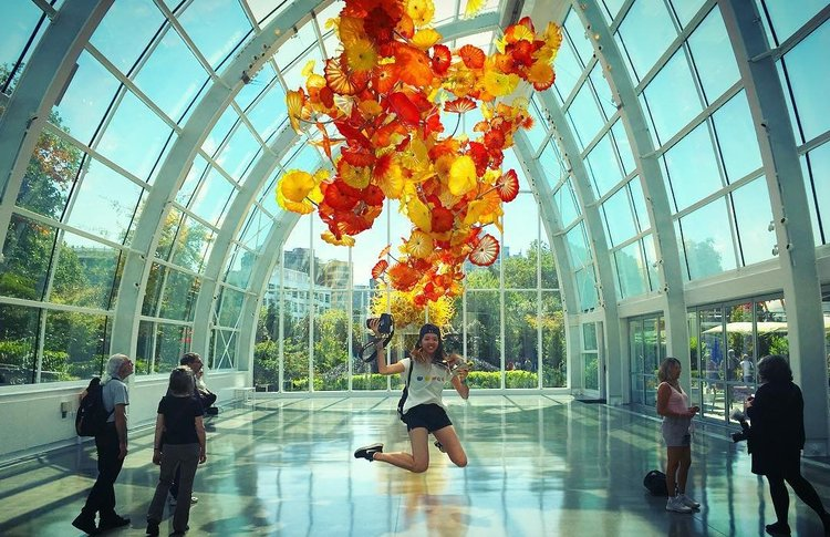 glass installation in glass house chihuly glass garden glasshouse seattle - Glass Garden Seattle