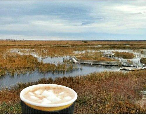 沼泽地寒冷的一天? 在前往观景台前,从OakHammockCafé品尝带有棉花糖的热巧克力! #hitsthespot #mmmmgood #yum #exploremb #fall #migration #october #birds #manitoba #geese #wetlands #marsh #hotchocolate #marshmallows