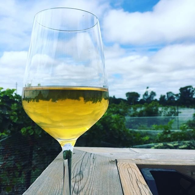 0dbdf09f Come try our newly released skin fermented Chardonnay. . . Did you know a  skin