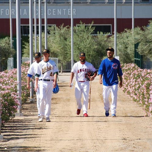 spring training cactus league schedule baseball in arizona
