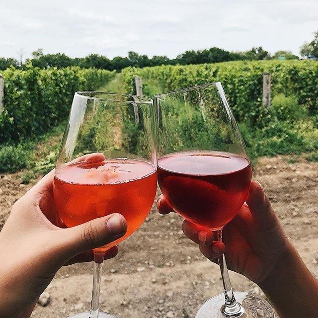 6fbb07223 Cheers à notre mini roadtrip improvisé jusqu'en Ontario 🍷Comté du Prince  Edouard,